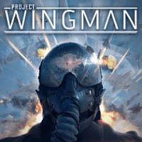 Okładka Project Wingman (PC)