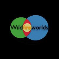 Okładka Wildfire Worlds (PC)