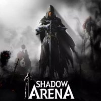 Game Box for Shadow Arena (PC)