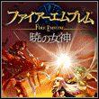 Fire Emblem: Radiant Dawn (Wii)