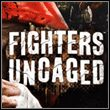 Fighters Uncaged (X360)