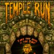 Temple Run (WP)