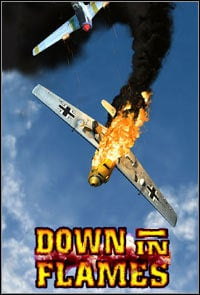 Okładka Down in Flames (PC)