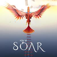 Okładka How We Soar (PS4)