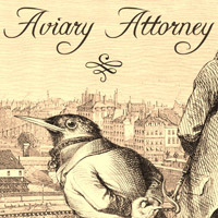 Okładka Aviary Attorney (PC)