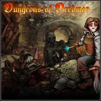 Okładka Dungeons of Dredmor (PC)