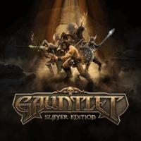 Okładka Gauntlet: Slayer Edition (PS4)