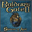game Baldur's Gate II: Shadows of Amn
