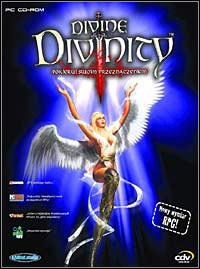 Okładka Divine Divinity (PC)