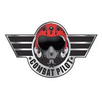 Okładka Combat Pilot (PC)