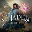 game Citadel: Forged with Fire