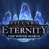 Okładka Pillars of Eternity: The White March Part I (PC)