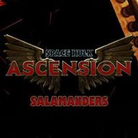 Okładka Space Hulk: Ascension - Salamanders (PC)