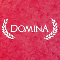 Okładka Domina (PC)