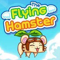 Okładka Flying Hamster (PSP)