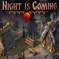 Okładka Night is Coming (PC)
