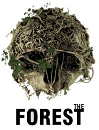 Game Box for The Forest (PC)