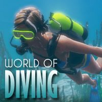 Game Box for World of Diving (PC)