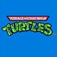 Teenage Mutant Ninja Turtles (PC cover