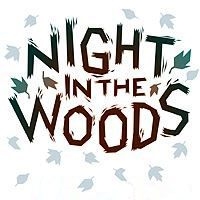 Game Box for Night in the Woods (PC)