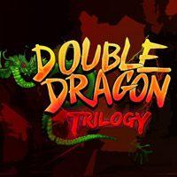 Okładka Double Dragon Trilogy (PC)