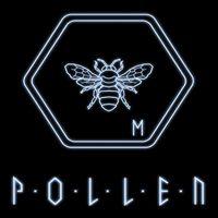 Okładka P.O.L.L.E.N. (PS4)