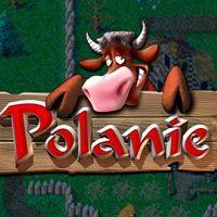 Okładka Polanie Remake (AND)