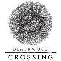Okładka Blackwood Crossing (XONE)