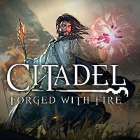 Game Box for Citadel: Forged with Fire (PC)