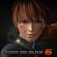 Game Box for Dead or Alive 6 (PC)