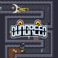 Game Box for Dungreed (PS4)