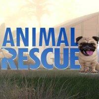 Okładka Animal Rescue (PS4)