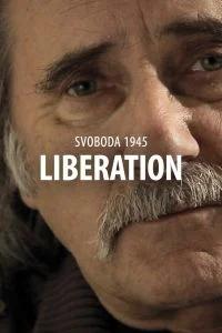 Svoboda 1945: Liberation (iOS cover