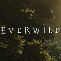 Okładka Everwild (XSX)