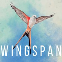 Game Box for Wingspan (PC)