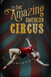 The Amazing American Circus (PC cover