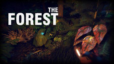 The Forest - survival horror z prawdziwego zdarzenia?