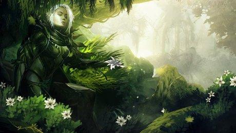 Gramy w Guild Wars 2 - Zieloni wśród śniegów