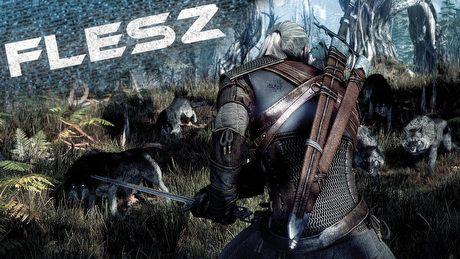 """FLESZ – 24 czerwca 2014 – The Settlers wracają, a Wiedźmin 3 """"przecieka"""""""