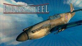 Birds of Steel (X360)