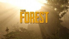 The Forest (PC)