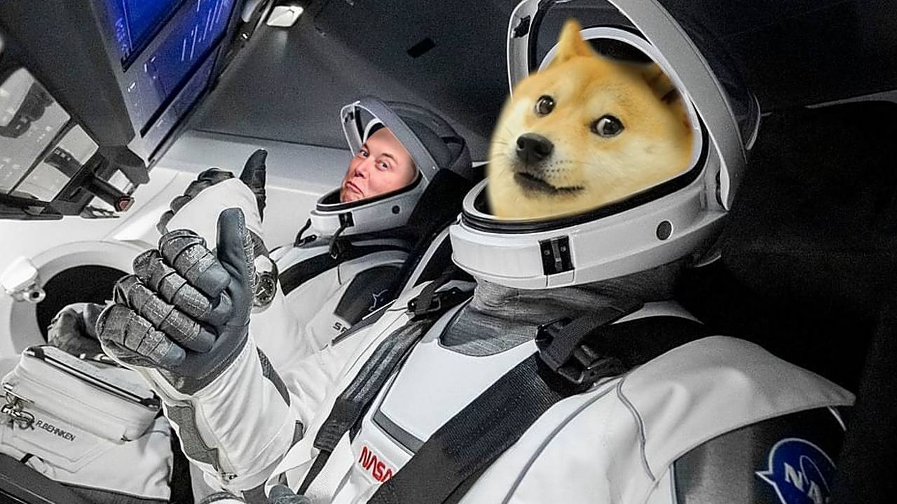 Dogecoin Drops; Elon Musk Will Re-launch It to the Moon ...